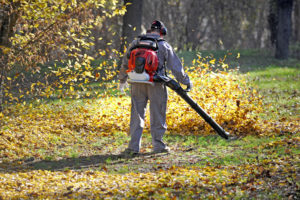 Souffleur de feuilles